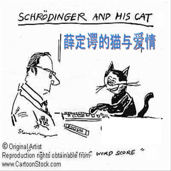 薛定谔的猫是什么意思,薛定谔的猫通俗解释